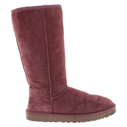 Ugg Boots in Fuchsia