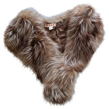 Marni Collar made of raccoon fur