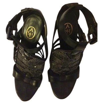 Ash Romeinse sandalen