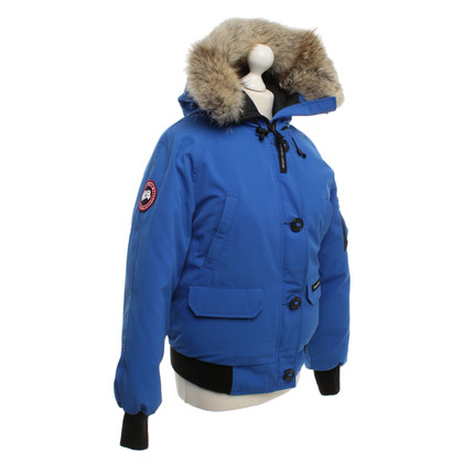 Canada Goose Bomber jacket in blue