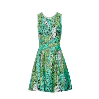 Issa Printed Green Jaquard Dress