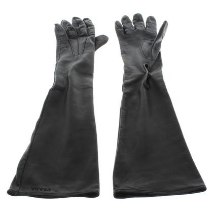 Prada Lange lederen handschoenen