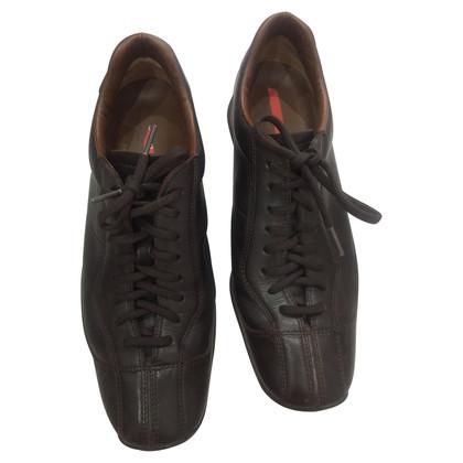 Prada Brown sneakers