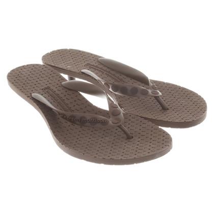 Sigerson Morrison Sandals in brown