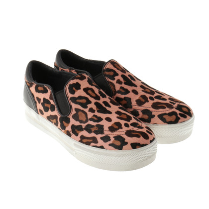 Ash Slip ons with Leo pattern