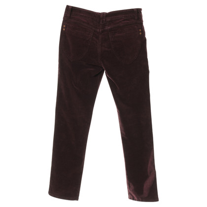 Closed Pants made of cotton Velvet