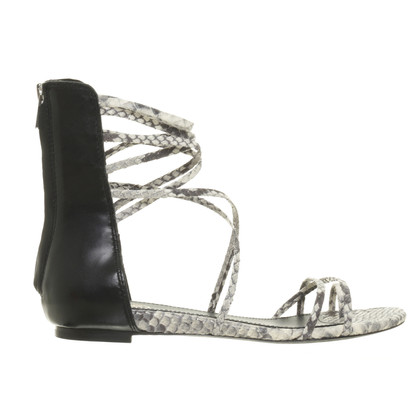 Ash Roman sandal in the animal look