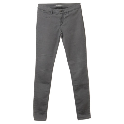 Drykorn Pants in gray