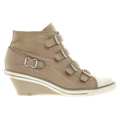 Ash Sneaker Wedges in Khaki