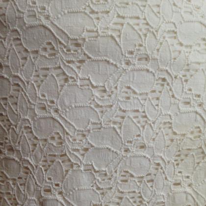 Velvet Jurk lace
