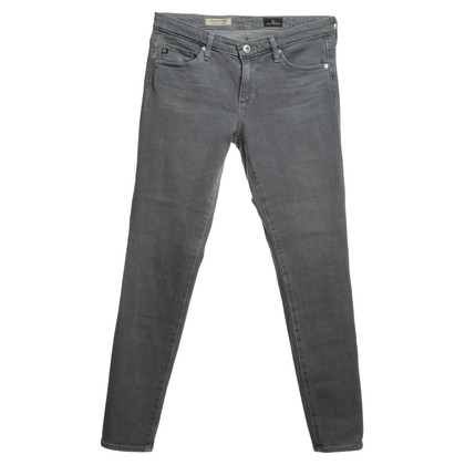 Adriano Goldschmied Jeans in gray