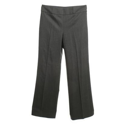 Armani Collezioni Pants in gray