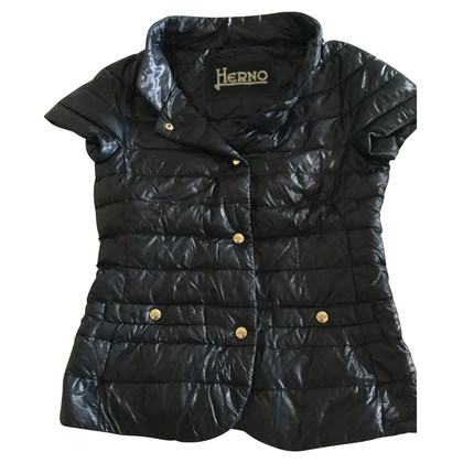 Herno Quilted vest in blue