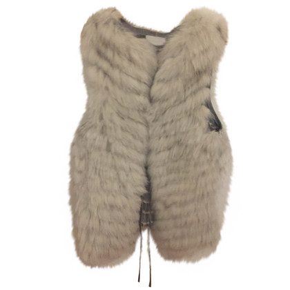 Other Designer Fur extreme - blue Fox vest