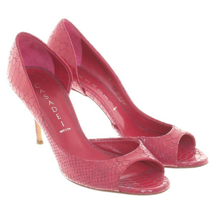 Casadei Peeptoes in fuchsia