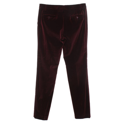 Etro Velvet pants in Bordeaux