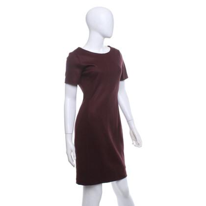 Set Dress in burgundy