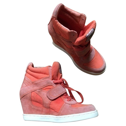 Ash Sneaker-Wedges