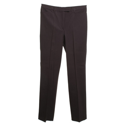 Gunex Broek in Purple