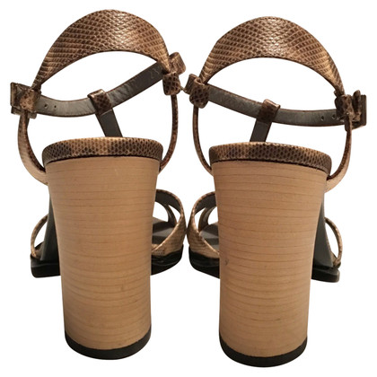 Gucci Sandals in Snake leather