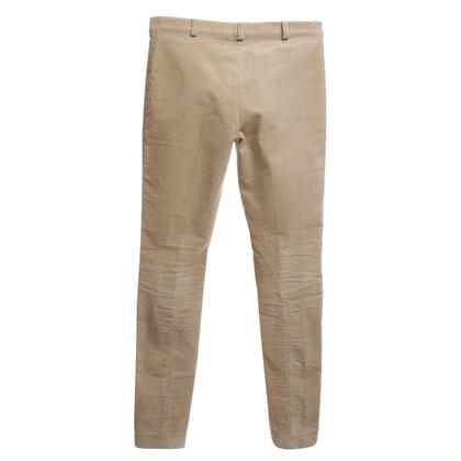 Joseph Camel cord pants