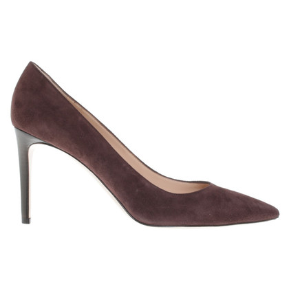Gianvito Rossi Suede pumps in Brown