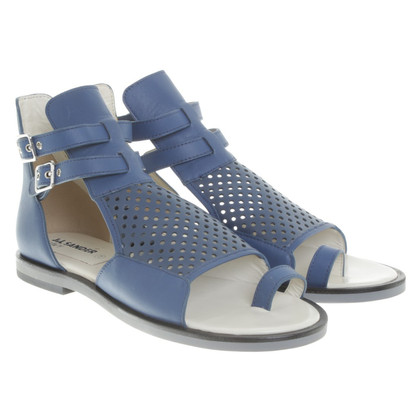 Jil Sander Sandals in blue