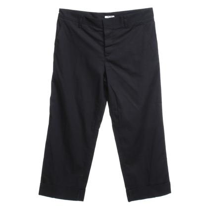 Miu Miu Blacks in trousers