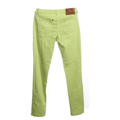 Strenesse Jeans in Neongrün