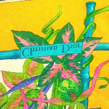 Christian Dior sciarpe di seta