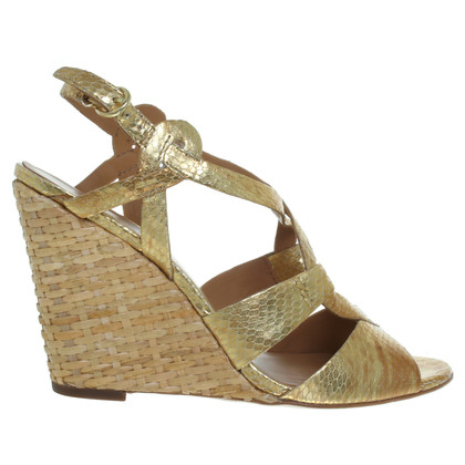 Ash Wedges in goud