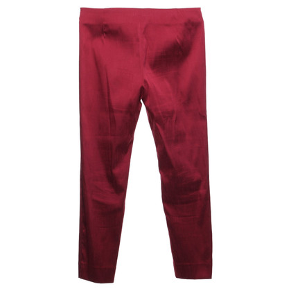 Maliparmi trousers in Bordeaux