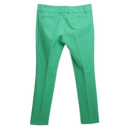 René Lezard Piega pantaloni verde