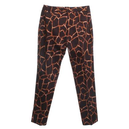 Dolce & Gabbana Pantaloni con stampa animalier