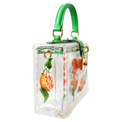 Dolce & Gabbana Plexiglass Hand Painted Bag