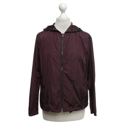 Prada Jacket in Bordeaux