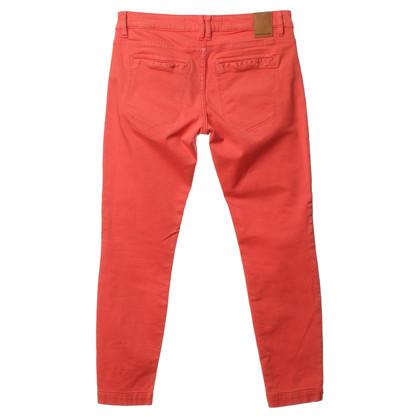 Drykorn Jeans in het rood