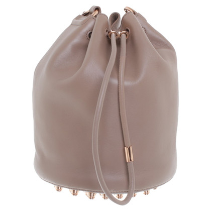 Alexander Wang Bag in Beige