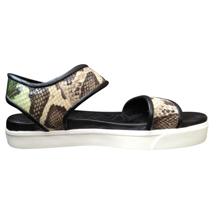 DKNY Sandals in brown / green