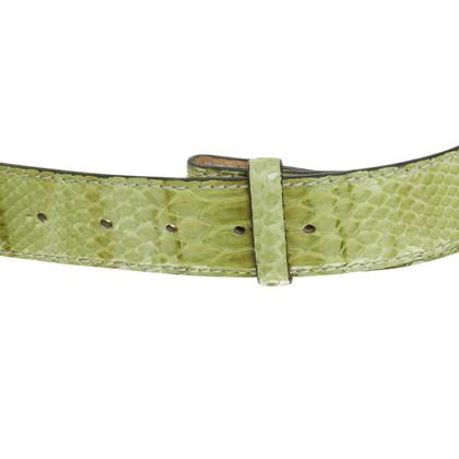 Reptile's House riem groen