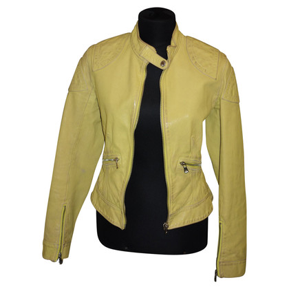 Dolce & Gabbana Leather jacket in yellow
