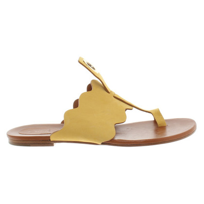 Chloé Sandals in Geel