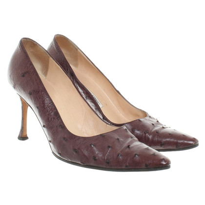 Manolo Blahnik Claret couleur pumps