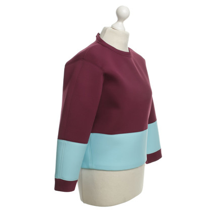 MSGM Top in Fuchsia / Light Blue