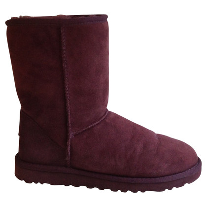 UGG Australia Boots in Purple