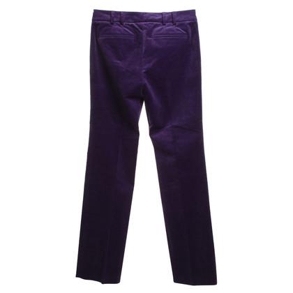 Gucci Fluwelen broek in Violet
