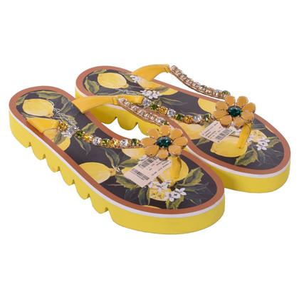Dolce & Gabbana Toescheider in geel