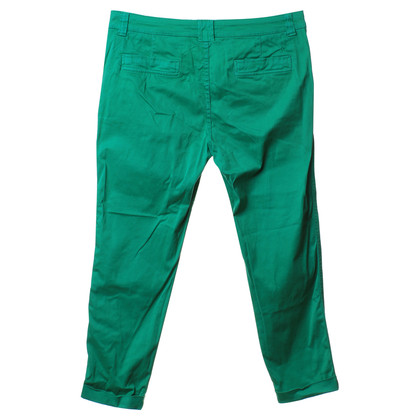 Closed Pants in green