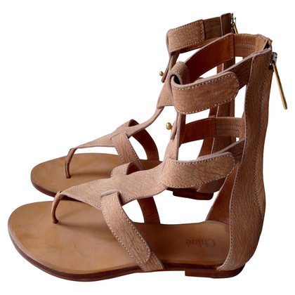 Chloé Sandals in de gladiator blik