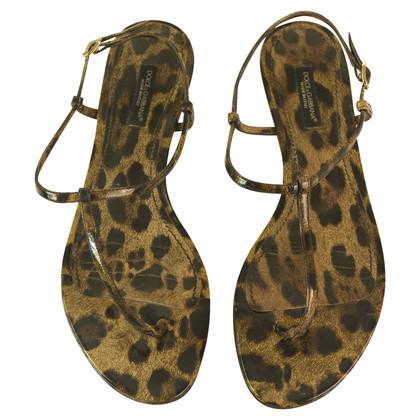 Dolce & Gabbana Patent leren sandalen met luipaard print